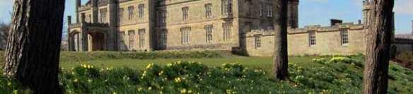 blairquhan-daffodils_